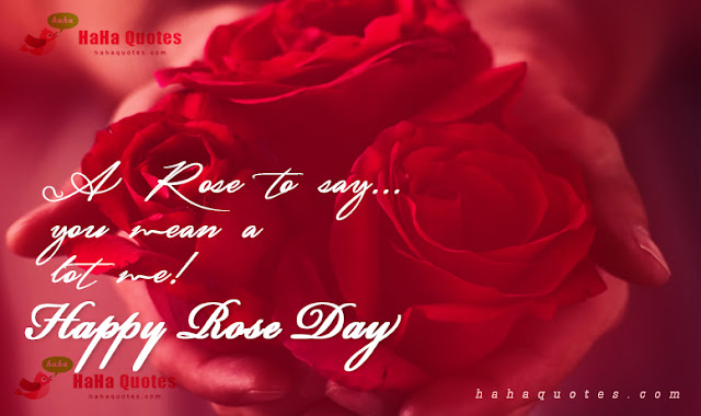 rose day29