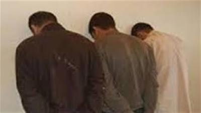 ضبط خلية إرهابية بحوزتهم مخططات وكتب للإخوان في ميت غمر