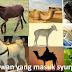 MasyaAllah !!! Luar biasa...Rupanya Inilah 10 Haiwan Yang Telah Allah Janjikan Syurga Baginya