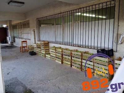 Έκλεψαν το κοινωνικό παντοπωλείο του Δήμου Ηγουμενίτσας -  Σχηματίσθηκε δικογραφία σε βάρος  δύο γυναικών και ενός άντρα
