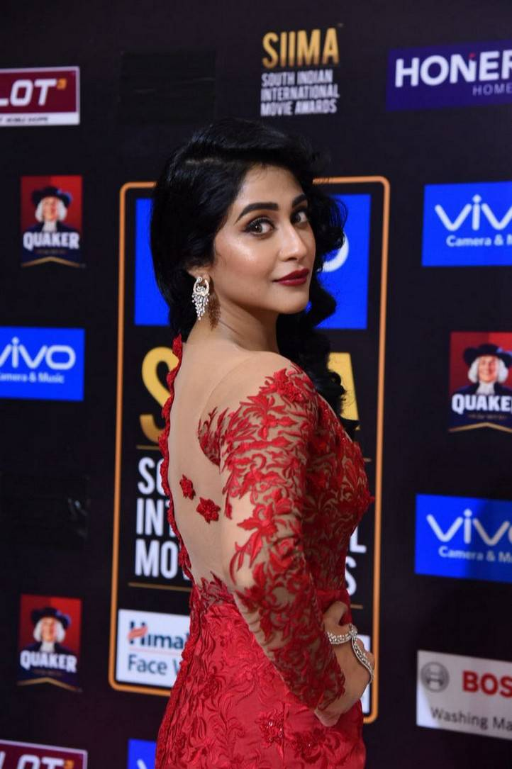 Actress Regina Cassandra Photos At SIIMA Awards 2017 In Red Gown
