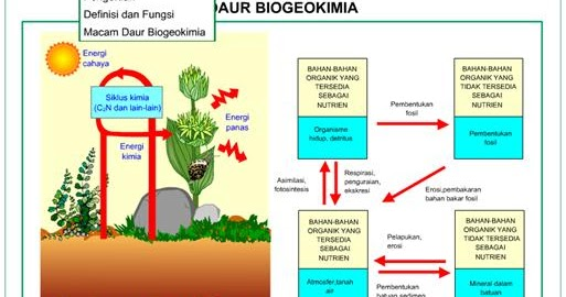 Materi Kimia Anorganik 1