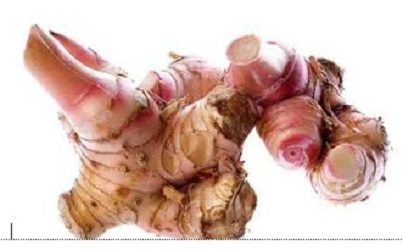 manfaat lengkuas untuk kulit wajah,manfaat lengkuas dan cara penggunaannya,manfaat lengkuas merah,manfaat lengkuas,manfaat lengkuas untuk kesehatan,manfaat lengkuas untuk kesehatan dan kecantikan,khasiat lengkuas untuk kolesterol,daun lengkuas bermanfaat untuk,manfaat lengkuas untuk kesehatan tubuh,manfaat lengkuas untuk kulit,cara pengolahan lengkuas,manfaat masker lengkuas,manfaat minyak lengkuas untuk kesehatan