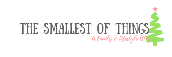 The Smallest Of Things Blog Logo