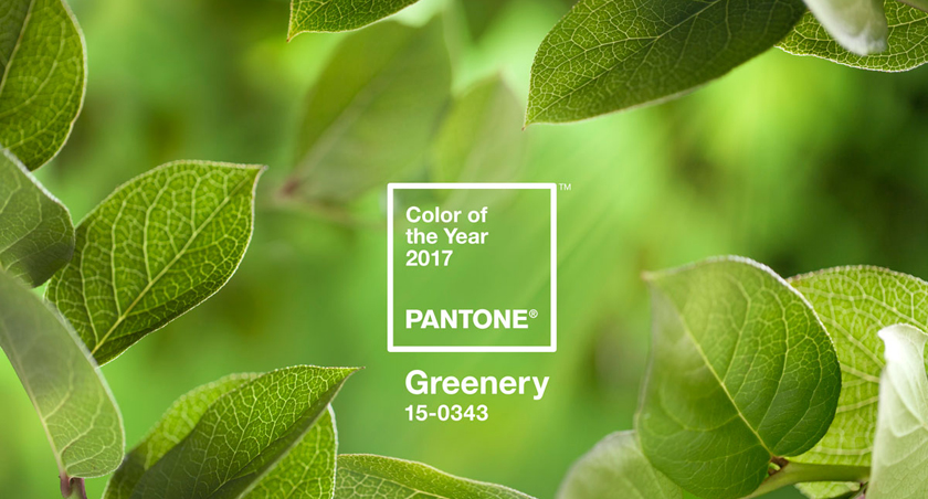 Pantone Colour of the Year 2017 Greenery 15-0343