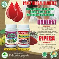 Obat Diabetes Basah Kering Kencing Manis Dengan Herbal De Nature Murah Aman Halal Tanpa Efek Samping