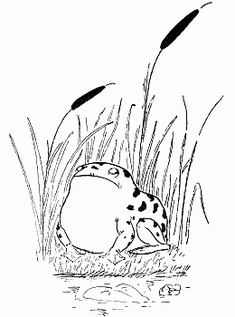 Hilaire Belloc: Poem: The Frog
