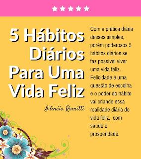livro - Idinéia Romitti - 5 hábitos diários para uma vida feliz