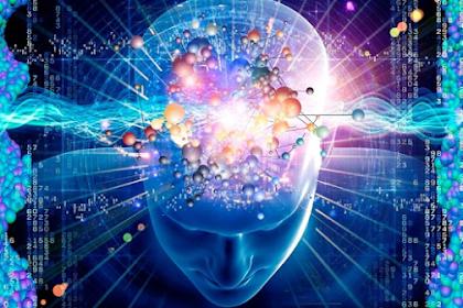 5 Fakta Unik Otak Manusia yang Jarang Diketahui Banyak Orang