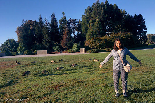 One Step at a Time: CA Trip 2015 (#2): Morning Jog at Leo J. Ryan Park [★]
