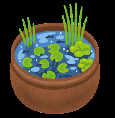 水鉢ビオトープのイラスト