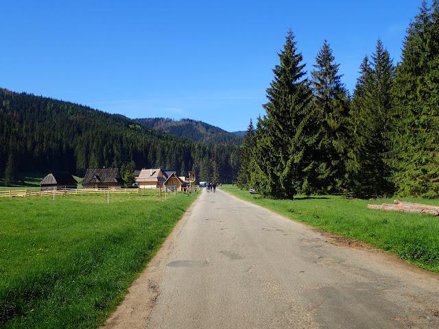 Droga przez Siwą Polanę