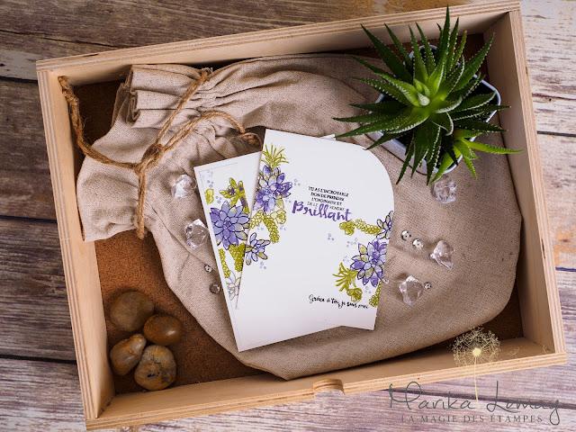 carte stampinup avec plantes succulentes
