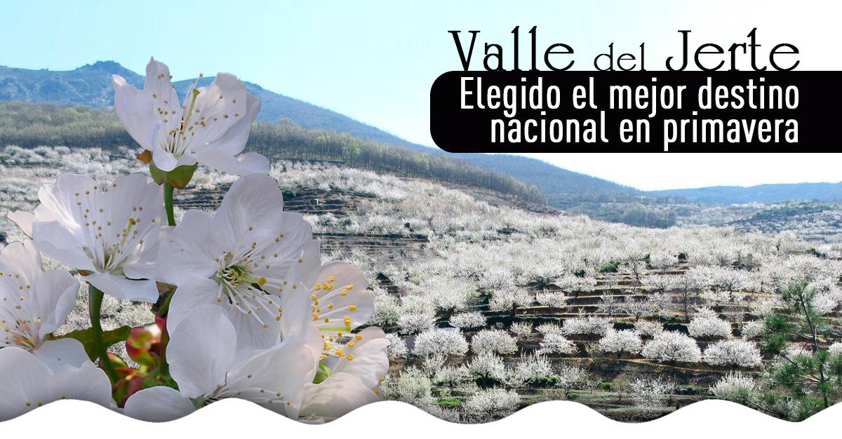 Cerezo en flor valle del jerte programa oficial los for Oficina de turismo valle del jerte