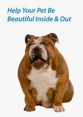 I Love My Dog Natural Pet Health Canine Bladder Stones