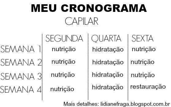 Tudo sobre Cronograma Capilar