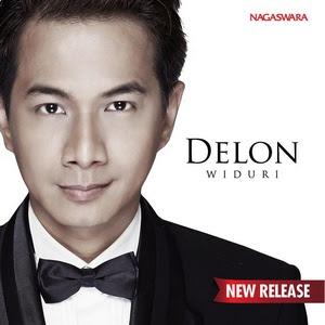 Download Lagu Delon - Widuri MP3