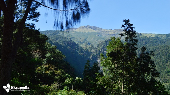 Ngarai Gunung Sumbing