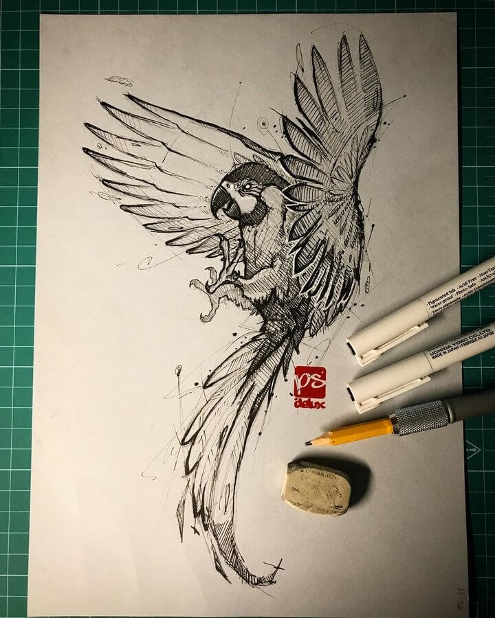 05-Parrot-Psdelux-Fineliner-Ink-and-Pencil-Animal-Drawings-www-designstack-co