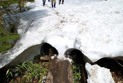 木道と残雪