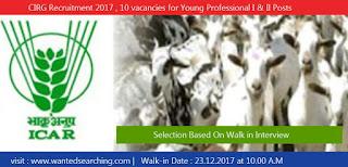 CIRG Recruitment 2017 , 10 vacancies for Young Professional I & II Posts