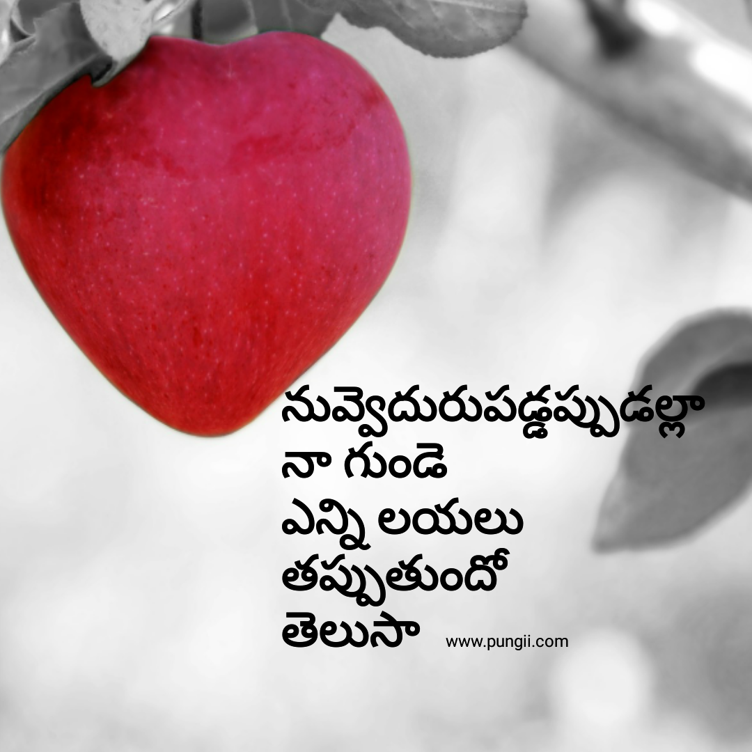 Telugu Love Quotes Cool Love Quotes In Telugu  Telugu Love Quotes