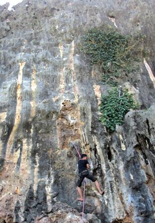 Panjat tebing atau istilah dalam bahasa Inggrisnya rock climbing merupakan salah satu akti 6 Lokasi Panjat Tebing Terbaik di Indonesia