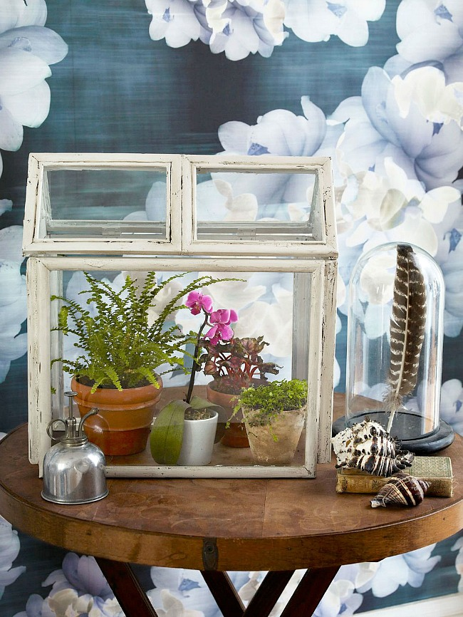 DIY Terrarium using picture frames