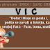 """VIC: """"Dolazi Mujo sa posla i, pošto se zavali u fotelju, kaže svojoj Fati: - Fato, bona, znaš li..."""""""