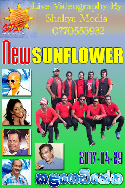 NEW SUNFLOWER LIVE AT KALAGEDIHENA 2017-04-29
