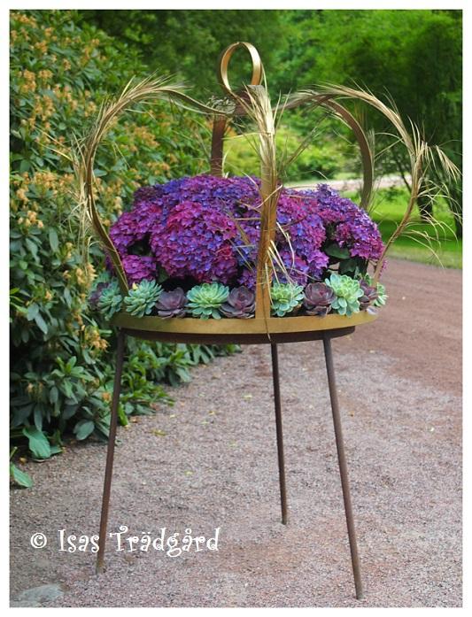 Trädgård O Sånt : Isas trädgård blomning och grönska på sofiero i juni