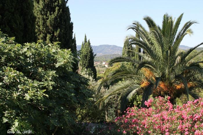 Vistas sobre el jardín de exuberante vegetación