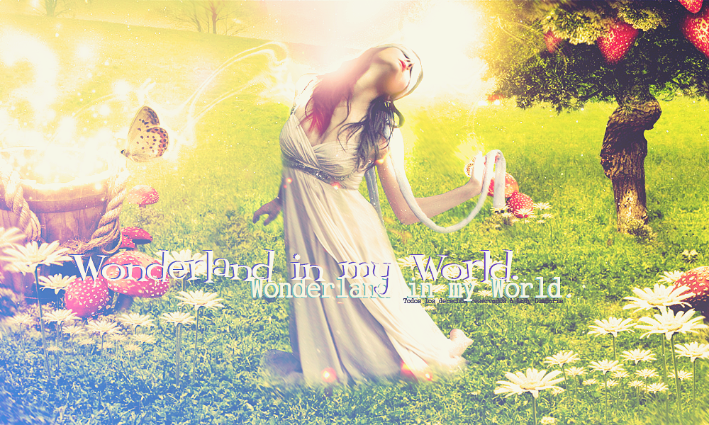 Wonderland in my World