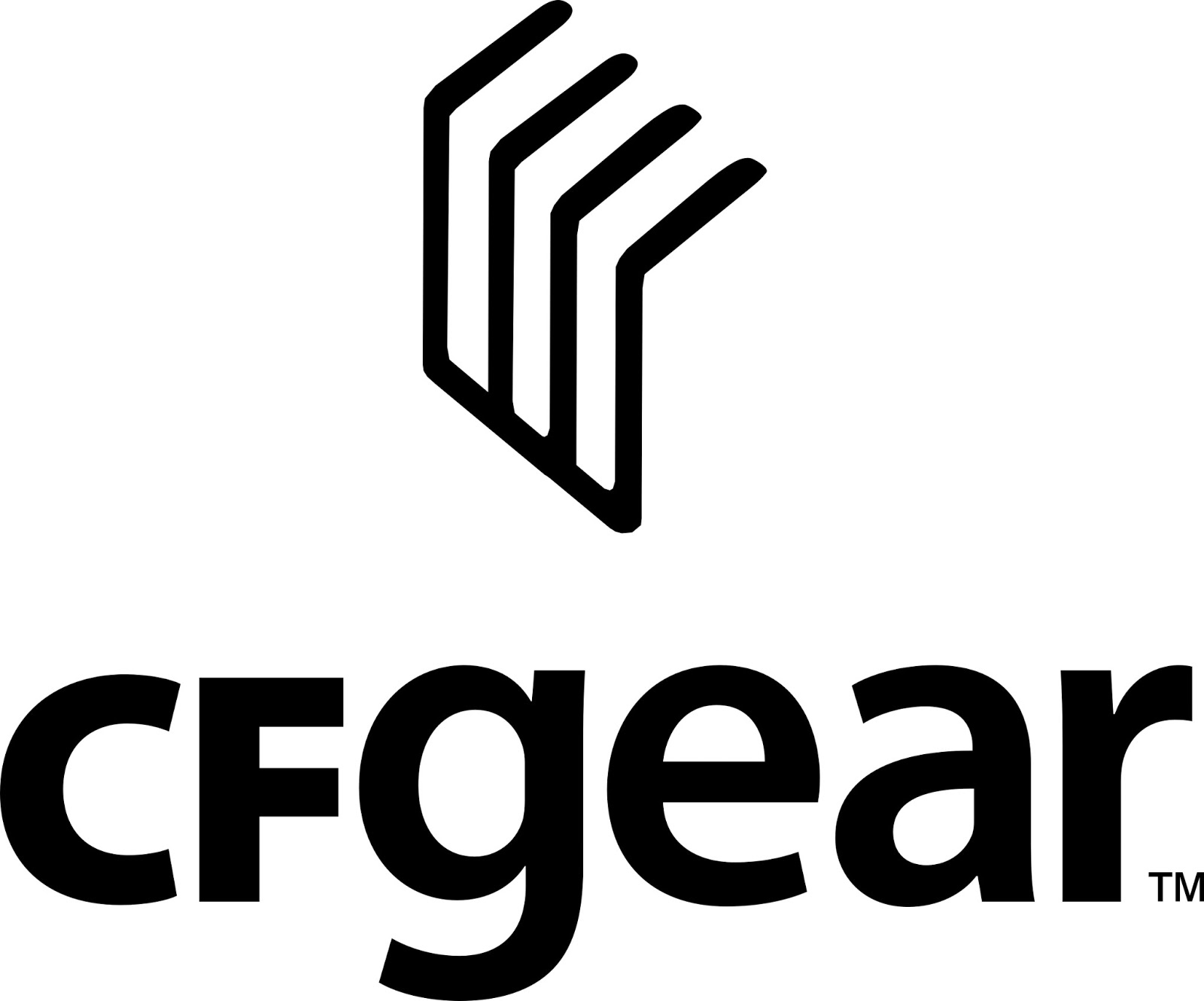 Comments From Cfgear Ceo On Recent Nand Flash Memory