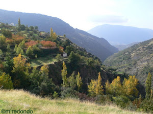 The Alpujarras