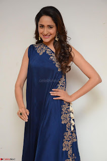 Pragya Jaiswal in beautiful Blue Gown Spicy Latest Pics February 2017 080.JPG