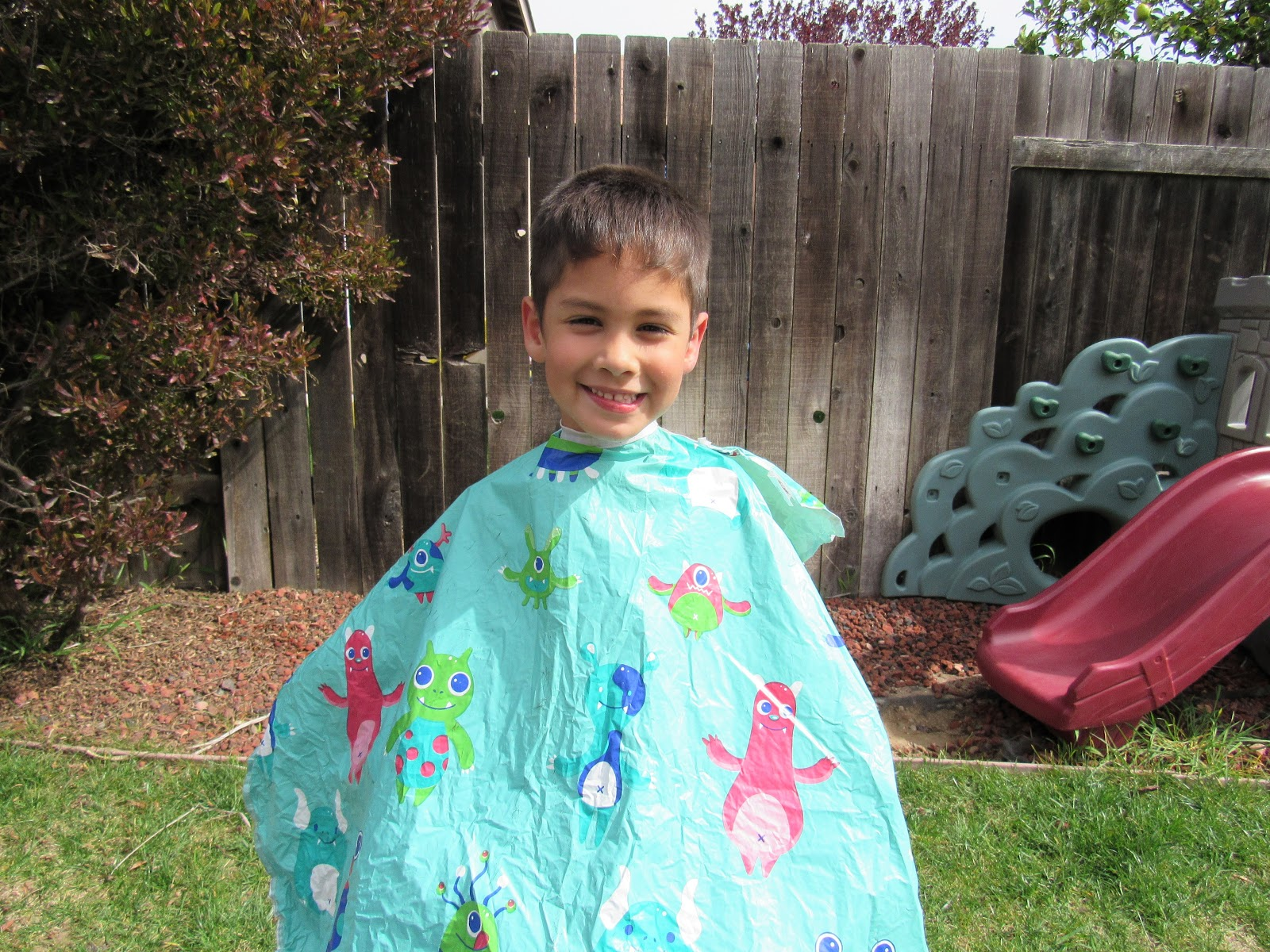 Writing Mother Fashionista Andis At Home Haircuts
