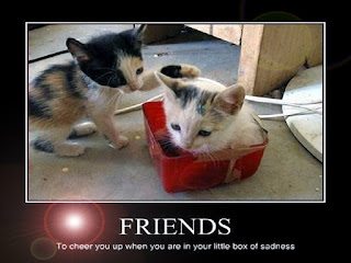 Funny Friendship Day Cards
