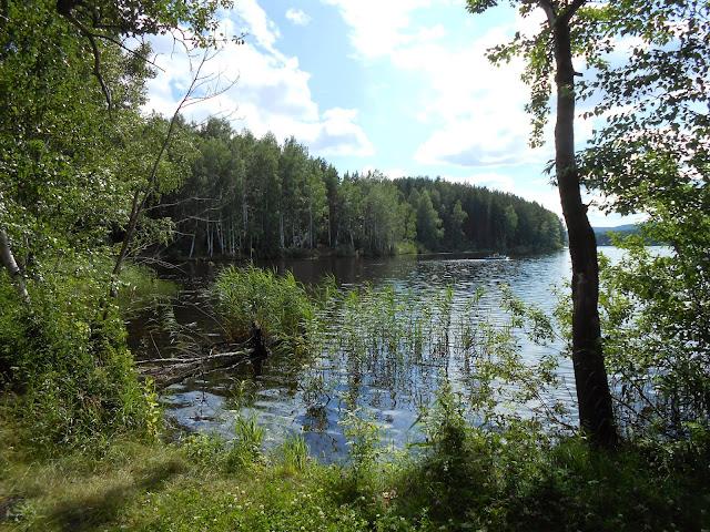 Деханов пруд на Дальней даче