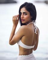 Priya Banerjee Sizzling in Bikini HeyAndhra.com