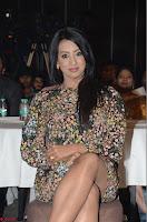 Sanjjanaa Galrani Rogue Movie Audio Launch 017.JPG