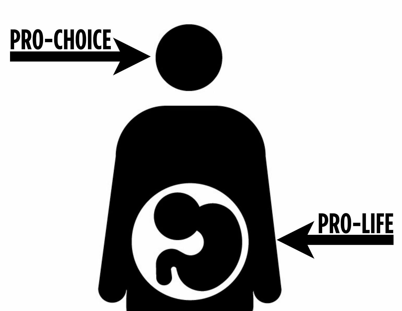 pro life and pro choice essay 91 121 113 106 pro life and pro choice essay