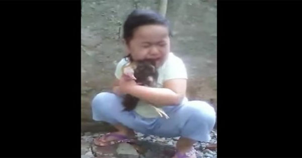 Girl cries for her dead chicken.