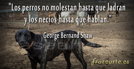 Frases para compartir de George Bernand Shaw