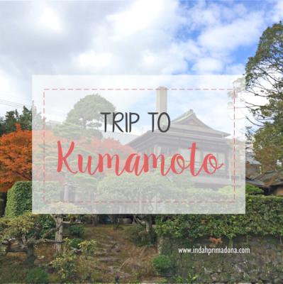 jalan-jalan ke Kumamoto, Suizenji Park, Kumamoto Castle