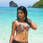 Shraddha das hot hd wallpapers 1