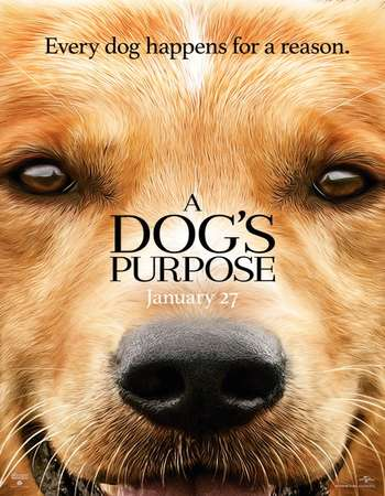 A Dog's Purpose 2017 Full English Movie Download