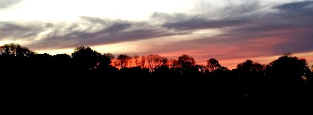 auringonlasku, peltomaisema, violetti taivas