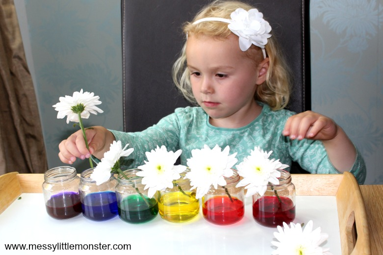easy science experiment for preschoolers