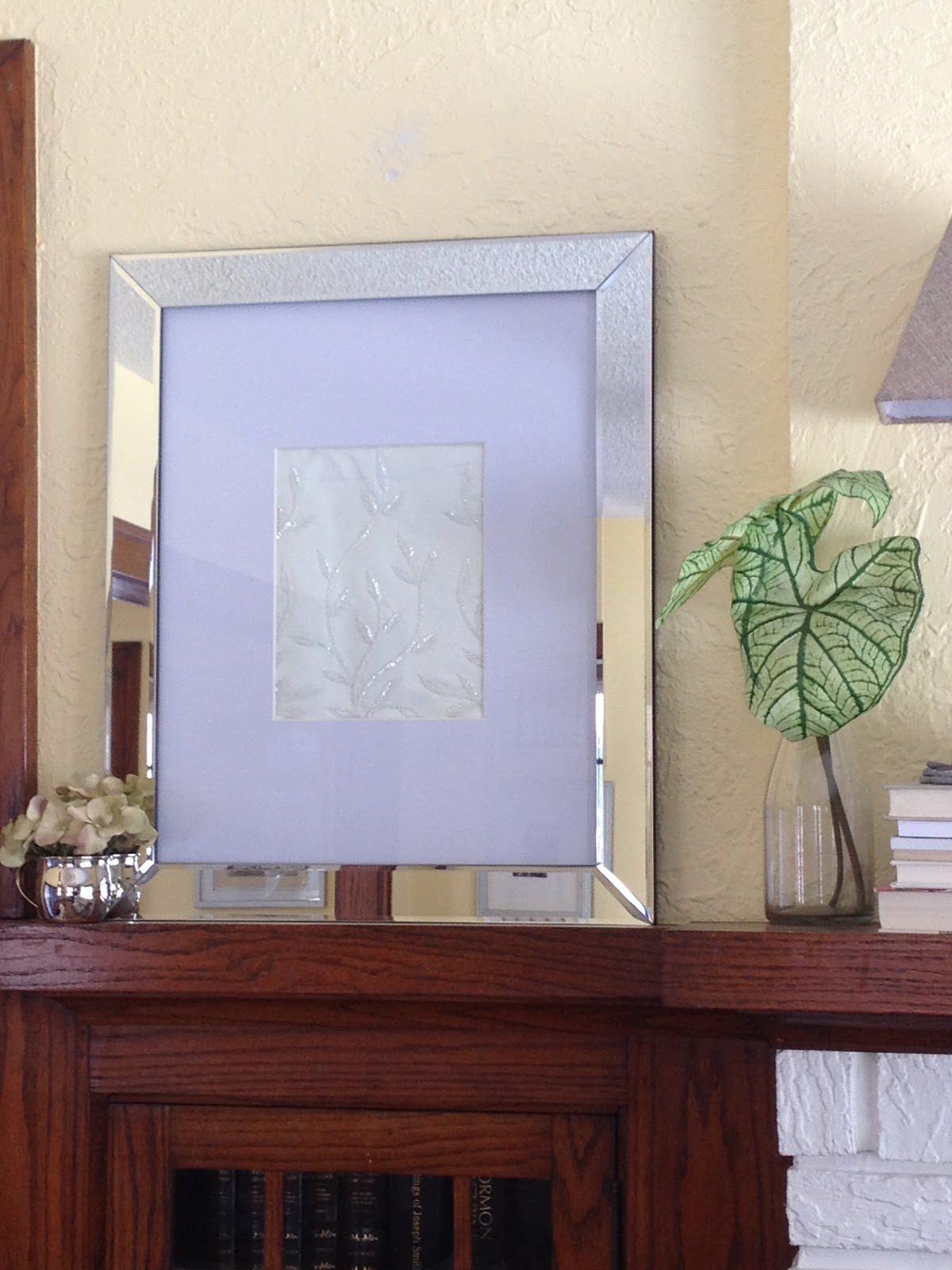 Pictures With Mirrored Frame 6